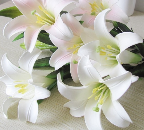 《野百合也有春天》里所描述的:就算你留恋,开放在水中娇艳的水仙.