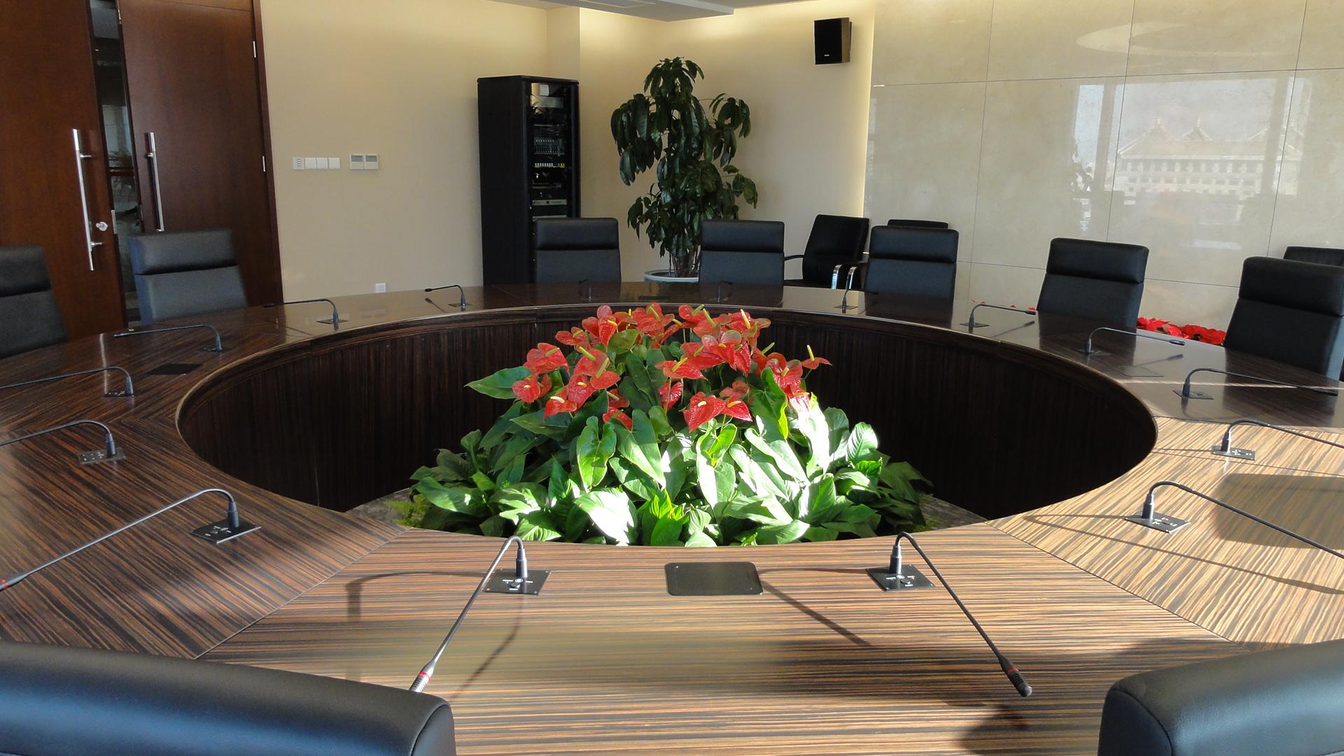 会议室摆放的植物